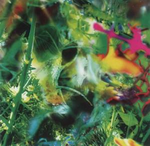 Second Nature album cover, October 30, 2000